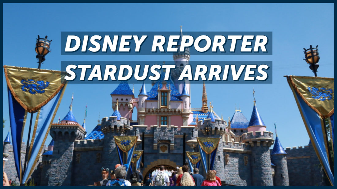 Stardust Arrives - DISNEY Reporter
